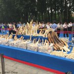 WWF & TRAFFIC believe #ivory destruction today in #China shows its commitment in combating #poaching & #ivorytrade http://t.co/MEjAWtn4tP