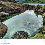 Pantai wediombo, Gunungkidul. mandi dsini adem brr..  #WonderfulJogja foto: Rifqi Moslem (@.rifqimoslem) http://t.co/mCYK8lWPya