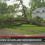 A large tree toppled on South Glenbrook Dr in #Garland during AM storm #WFAAweather http://t.co/u0fI8AISC0