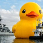 World's Largest Rubber Duck To Be Featured At Tall Ships Festival: http://t.co/rEhbxh1g6K http://t.co/SEQxVm4l1H