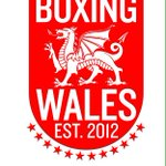Since @LeeSelby126 has become Wales 12th world champion, heres our new logo with a significant little addition... http://t.co/EpweO2s0ao