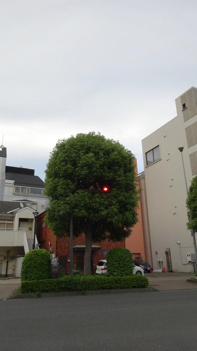 ついでに、妖怪信号、赤目バージョン!! http://t.co/X84CTYQaWy
