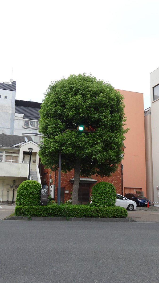 日立の妖怪信号!! 青目バージョン!! http://t.co/tgCTOTMVpr