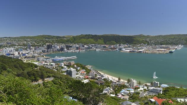 Top 6 Things To Do in Wellington, NewZealand @PureNewZealand