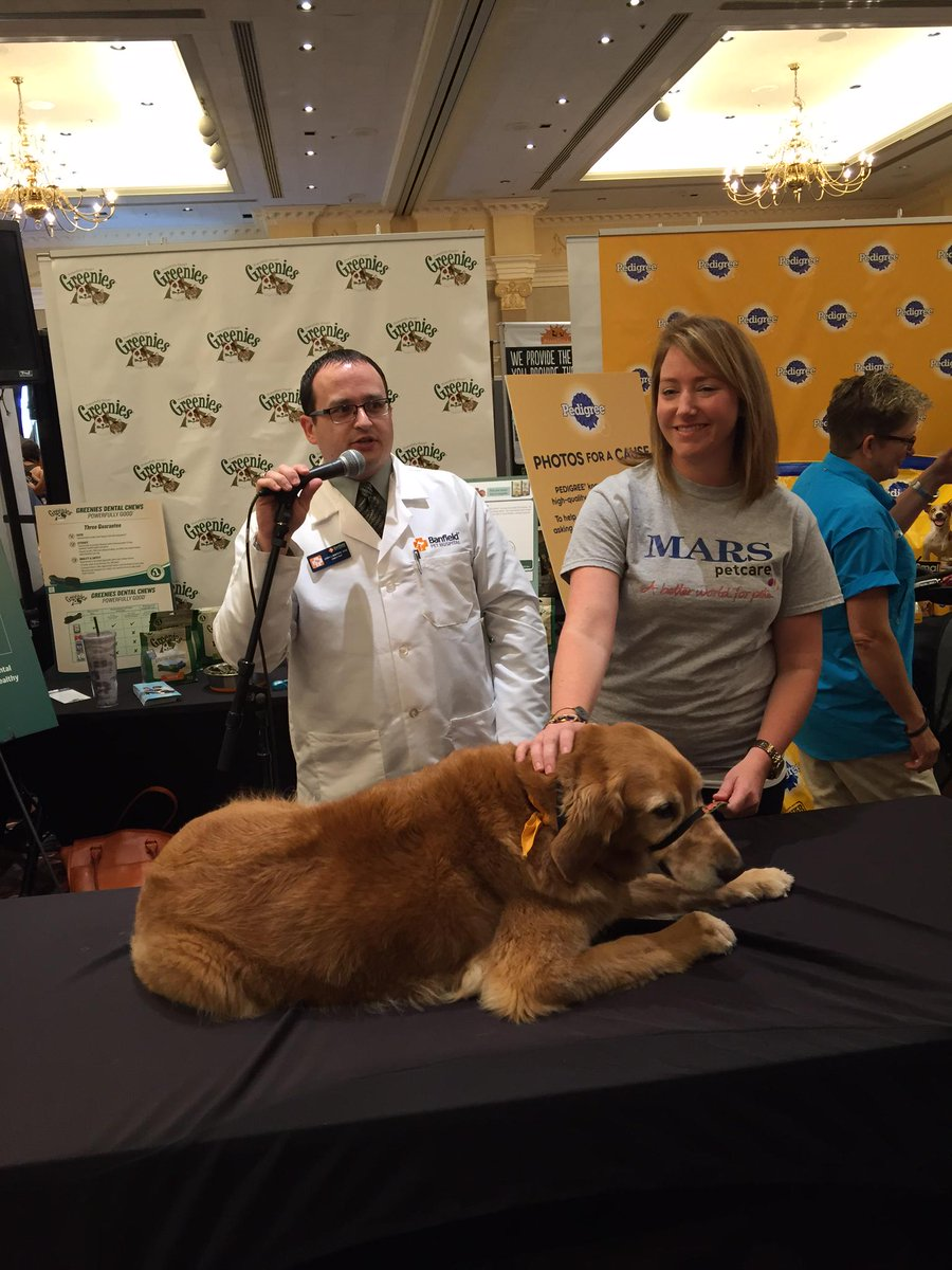 We had a great time at #BlogPaws over the weekend! RT if you did too! http://t.co/eJYNA3mCiV