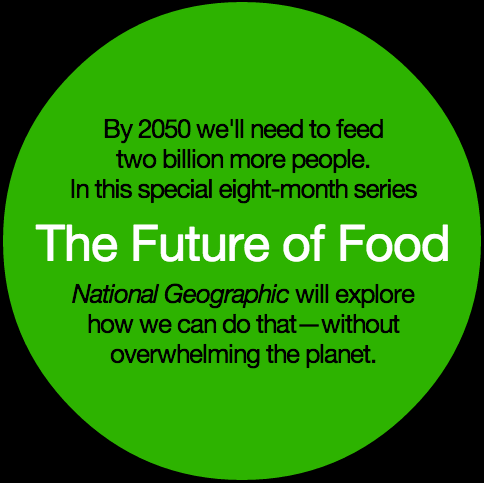Future of Food: Consumers need to know more about issues http://t.co/0Nvescr9wO via @AnimalAg #aaa15 #foodiechats http://t.co/7DeXhKaY1s