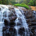 Coorg, Karnataka. @narendramodi #IncredibleIndia