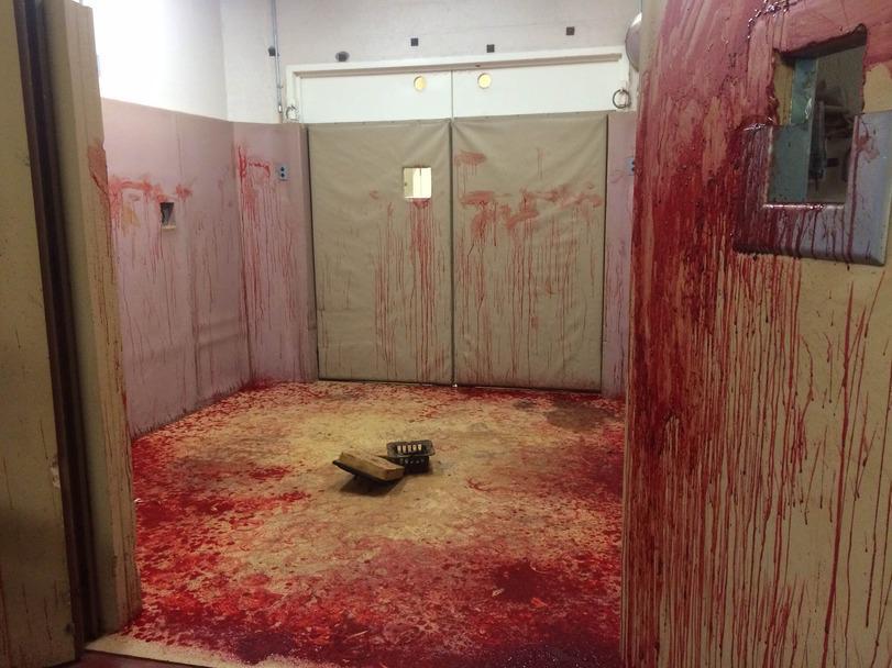 Ничего страшного, просто в этой комнате была лошадь с кровотечением из носа.