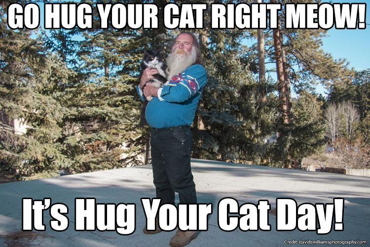 Its National Hug Your Cat Day Show Us Your Purrrfect Cuddle With