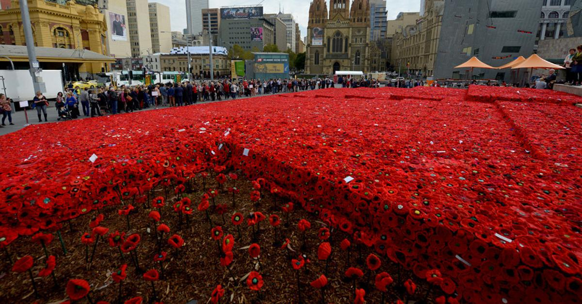 A Sea of Knitted Poppies Has Filled a Square in Melbourne and It's Amazing http://t.co/sk2ejuPoqO http://t.co/QaY8K4KHL4