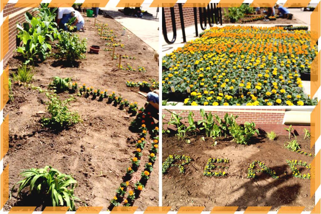 Neenah Library (@neenahlibrary): #FlashbackFriday our awesome garden featuring a special message in the flowers! #read #summeratthelibrary #library http://t.co/gevbZKgKVQ