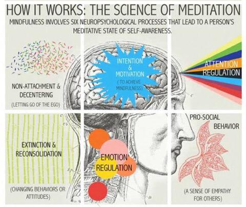 Why meditation is good for you ... #meditation #leadership #growth http://t.co/myzziRsA4a