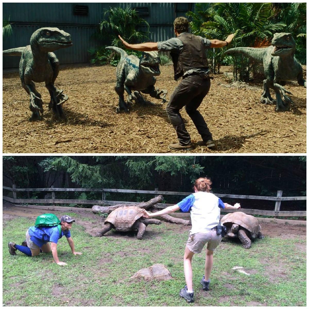 We couldn't resist. #JurassicZoo #prattkeeping http://t.co/b3m8deMRNF