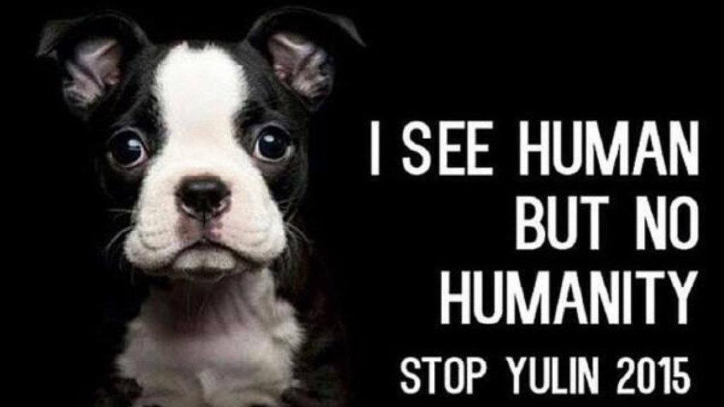 #StopYulin2015: La campaña que se toma Twitter para detener el festival chino http://t.co/qO71bFau5A http://t.co/La1PrJkiOY