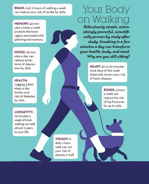 How about a massive RT. Walking is AMAZING for health. #RSMExerciseMed @StevenNBlair @CathCalderwood1 @exerciseworks http://t.co/eYqVOLY3xL