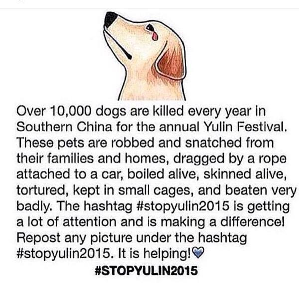 PLEASE RT to get the word out to #StopYuLin2015 & FOR GOOD! What if it were your pet? Sign