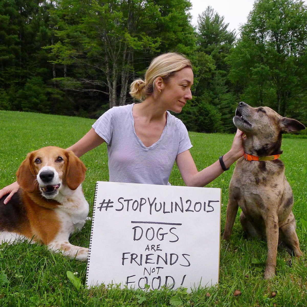 Please help stop this sickening animal cruelty. #StopYulin2015!  Sign & share: http://t.co/3ILECJNeEo http://t.co/wZCcExjC2z