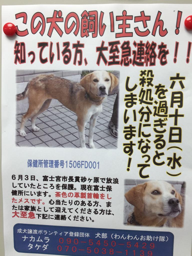 とりあえず、富士、富士宮、芝川方面で拡散希望。 http://t.co/MNknIkMd1S