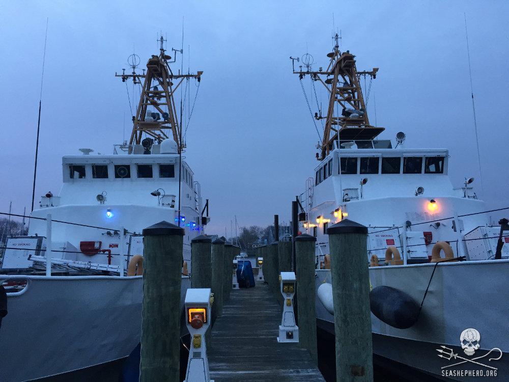 RT @SeaShepherd_USA: THE OCEANS NEED YOU! Join #SeaShepherdCrew! Volunteer aboard @RVMartinSheen or @SSCS_Cutters: http://t.co/ZM7YtzpFv2 h…