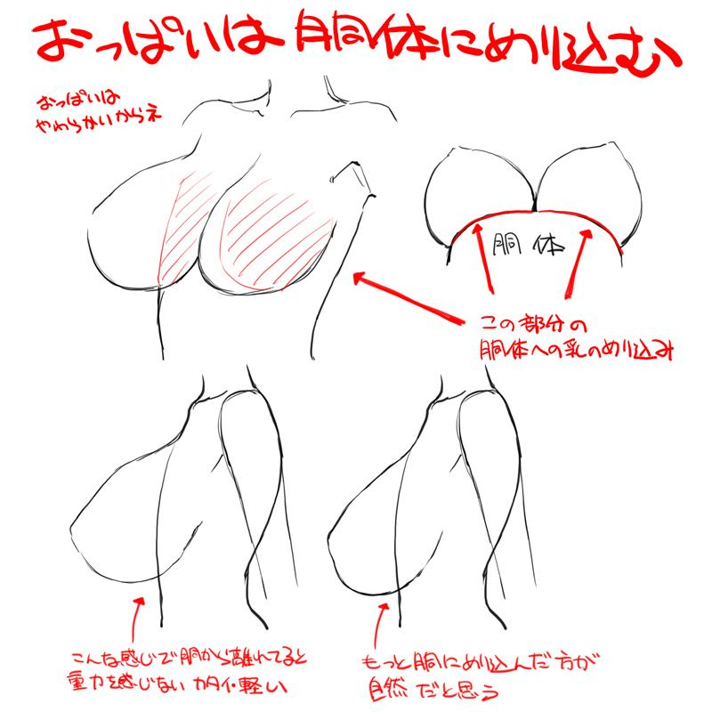 さっきの乳の胴体へのめり込みの図解。絵だと奥行きがないから重なり部分がスポイルされて誤魔化されるけど、立体だとその辺の嘘がつけない。だからこの辺りを上手く処理出来ると、柔らかいおっぱいが出来るんじゃないかなって思う。 http://t.co/TfVRADQTZW
