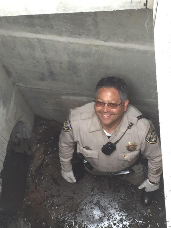 Ducklings trapped in a storm drain this afternoon prompted a rescue by our officers. All back safe to mama duck! http://t.co/XVQgLIAqei