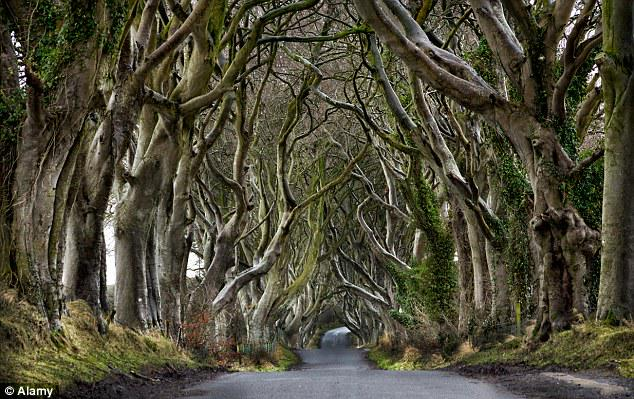 Tourism is coming ... as Game of Thrones fans flock to Northern Ireland