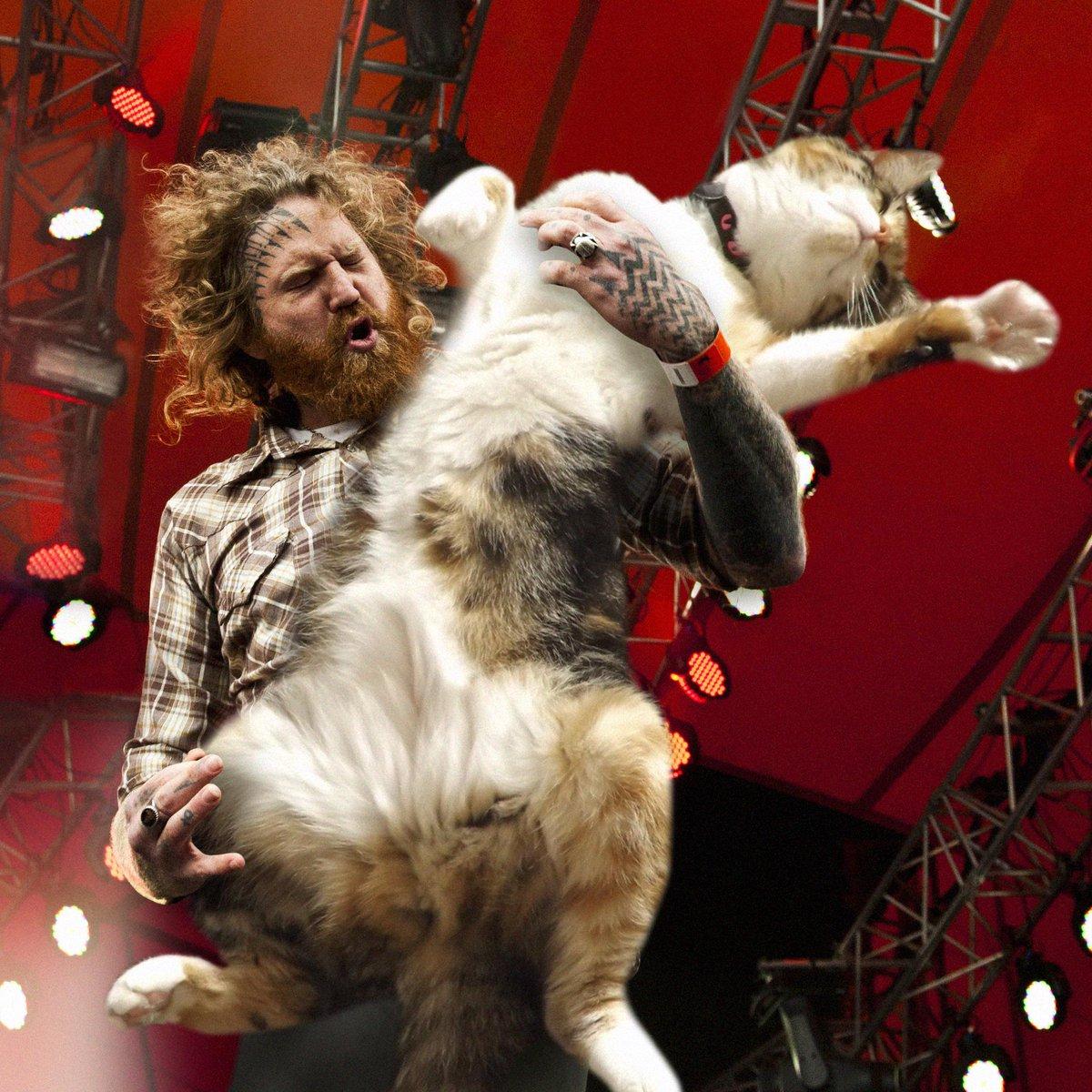 #mastocat http://t.co/u2mx9ktFeu