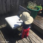 Should I be worried my two-year-old insisted on watering the chair? http://t.co/6Dccig3oOa