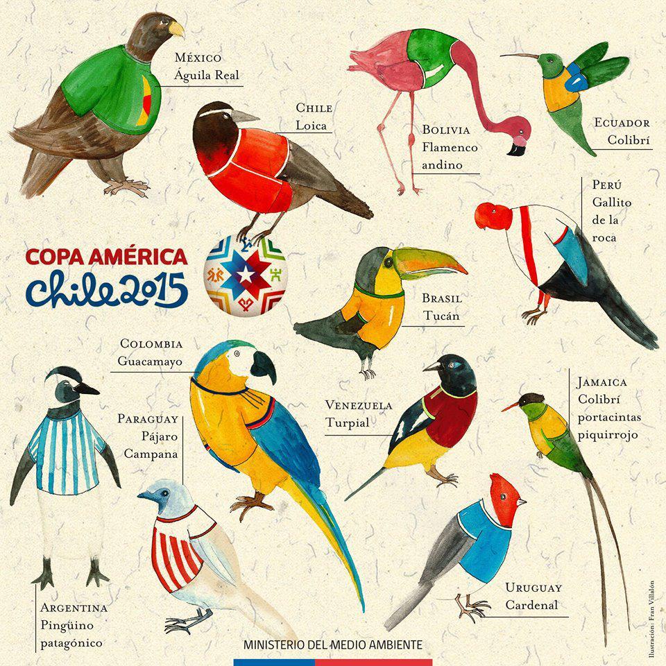 ¿La viste? Esta es nuestra Selección de Aves de América #FelizLunes http://t.co/JHETnrNuPZ