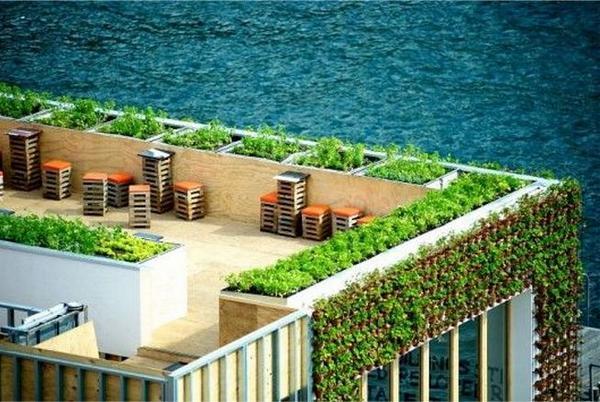 Dit restaurant serveert verse #groenten van eigen dak, hoe lekker is dat? #daktuin @WierHier @Balkongroenten http://t.co/Cs3vWwgaFr