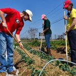Ten things we can all do to support a #local food system http://t.co/PvsP6zlKn3 http://t.co/QyqWoJEyjp