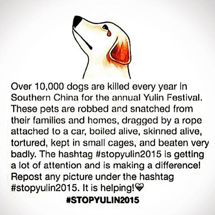 This makes me so sad! Please repost if you love your doggies