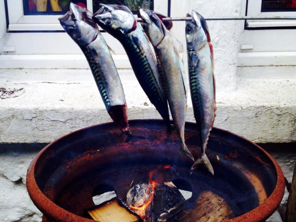 First mackerel of the year #fishing #Skye http://t.co/l95JSABxl4