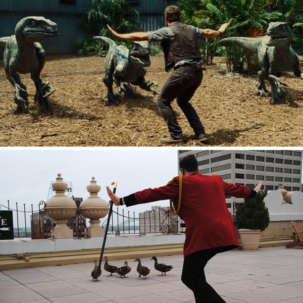 Ducks in training. #JurassicWorld #JurassicDuckmaster #RaptorSquad #DuckSquad http://t.co/mF4iB8530d