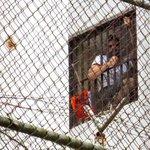 "¡DESATÓ LA POLÉMICA! ""Está firmada la boleta de liberación de Leopoldo"", dice Patricia Pol… http://t.co/gPS1UgZXaO http://t.co/Xvb77LZ8rO"