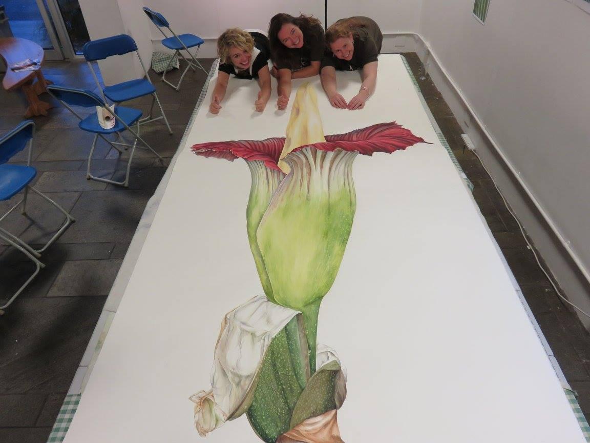 Magnificent painting of @TitanArumRBGE by artists Sharon Tingey, @gunerisik & @JacquiPestell #clashofthebrushes http://t.co/uvHGawDxaf