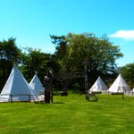 Mid-week #camping #glamping available this July #hottestdayoftheyear Come to #Sunny #Scarborough http://t.co/BOo8XsXgaX