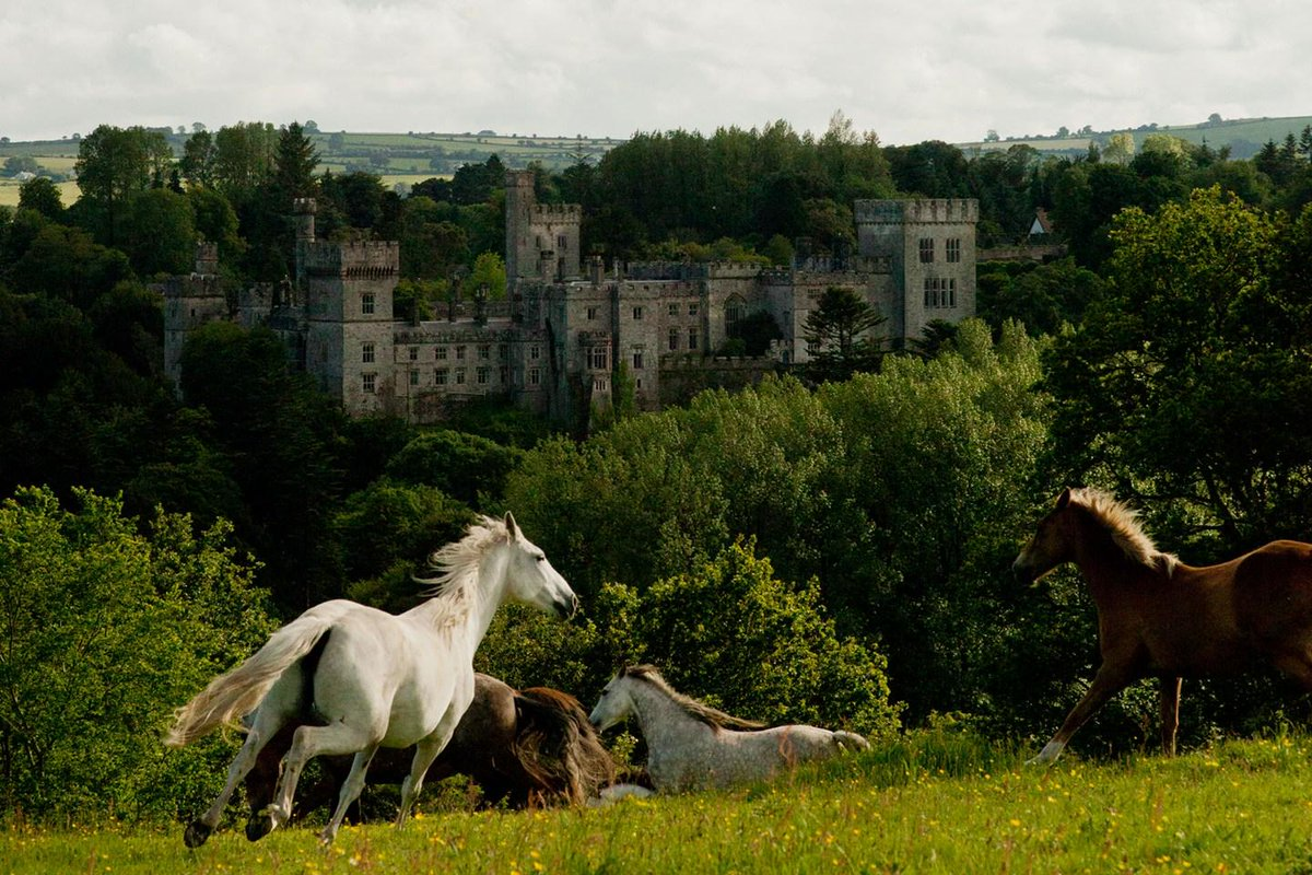 How about a weekend in Ireland? These captivating castles are not pretenders but strongholds