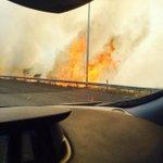 @ideal_granada incendio en el lateral de circunvalación entre las salidas de recogidas y armilla http://t.co/jui5LmdmPV