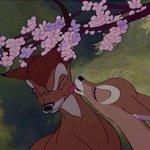 Cuando te quiere besar después de que te la chupó. http://t.co/b0bDgBfqj3