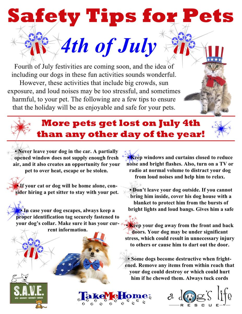 More pets are lost on the #4thofJuly than any other day. Here are tips to help keep ur pet safe this year #petsafety http://t.co/mLTImv9GvH