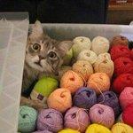 Что значит ты купил это не для меня? http://t.co/H2iodiMlFS