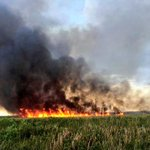 Large fire burning near I-75 Toll Plaza in west Broward. Motorist use caution. Very smoky! #fire #breaking http://t.co/QrK6rEVffj