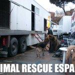 Así vive el oso de #VayaFauna1 Foto denuncia de 2011, Ese oso vive hacinado en un trailer durante toda su vida. :( http://t.co/V6HQZJyDcV