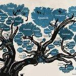 Infografía: La distribución de las lenguas http://t.co/BbjX6W7TpG http://t.co/tW2IY2G39H