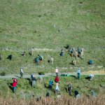 DSS Volunteers, Auckland, New Zealand participating in Plantation Day @ Kawa kawa Bay, Waitawa Regional Park,Auckland http://t.co/LfgsbU9Sr3