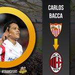 [#Transfert] Selon le Telegraph, Carlos Bacca devrait sengager avec le Milan AC cette semaine ! http://t.co/VDB44R24TS