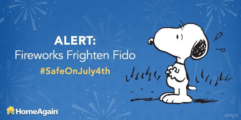 Fireworks frighten pets! Help ensure they're #SafeOnJuly4th by keeping pets inside & microchipped. #HomeAgain http://t.co/Bbwu1FwI1L