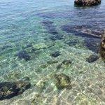 """""""@LombRacx: Che ne dite dellacqua oggi al @bagnoleginestre #Trieste mi butto? http://t.co/cqwFIULy9R"""" #mare #mareFVG"""