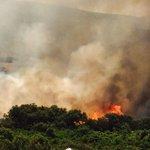 #Ronda   #Incendio en la zona militar de Navetas. Informa al minuto @SUR_Ronda. http://t.co/laGHP2c1Ei http://t.co/qSFi7Nruew